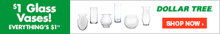 Dollar Tree Glass Vases 320x50