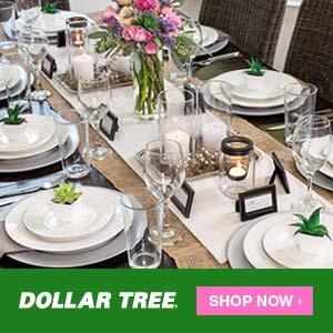 Dollar Tree Table Top 300x300