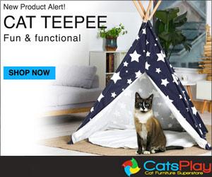 Cats Play teepee_300_250